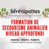 Formation Sérénipattes